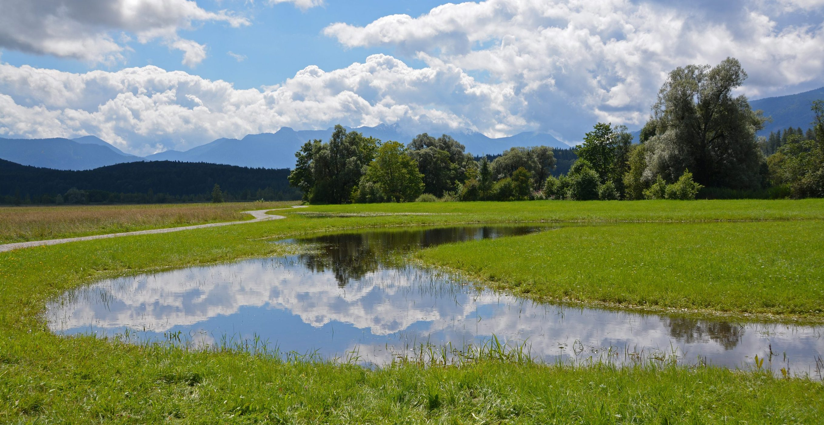 Staffelseemoore mit Blick auf Estergebirge